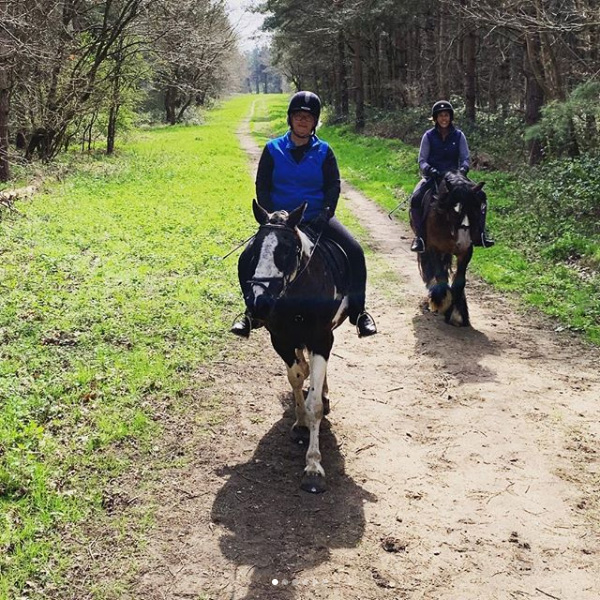 Forest Ride in spring