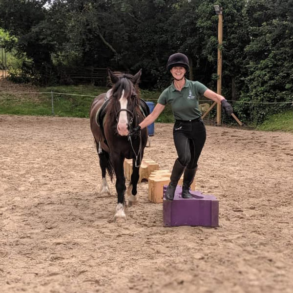 Picture of Handy Pony games