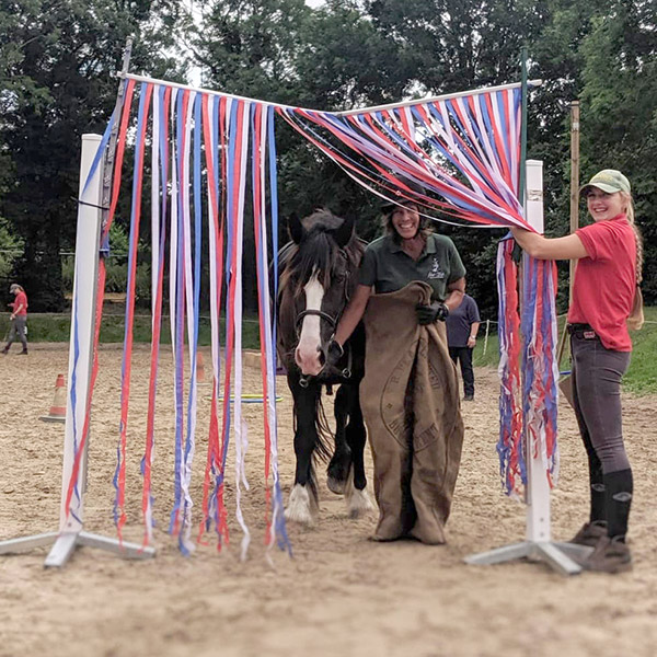 Picture of Summe Camp Handy Pony games
