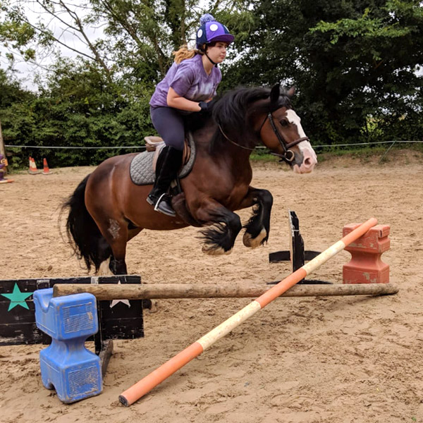 Picture of Truffle jumping
