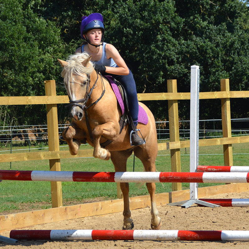 Picture of jumping lesson